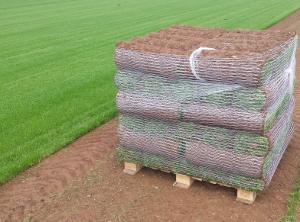 pallet-of-freshly-cut-turf